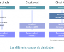 types de canaux de distribution
